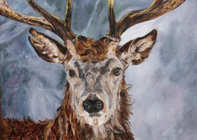 Winter Stag by Tanya Montandon