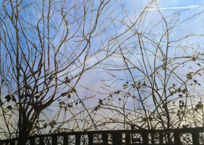 Tree Skeleton by Tanya Montandon